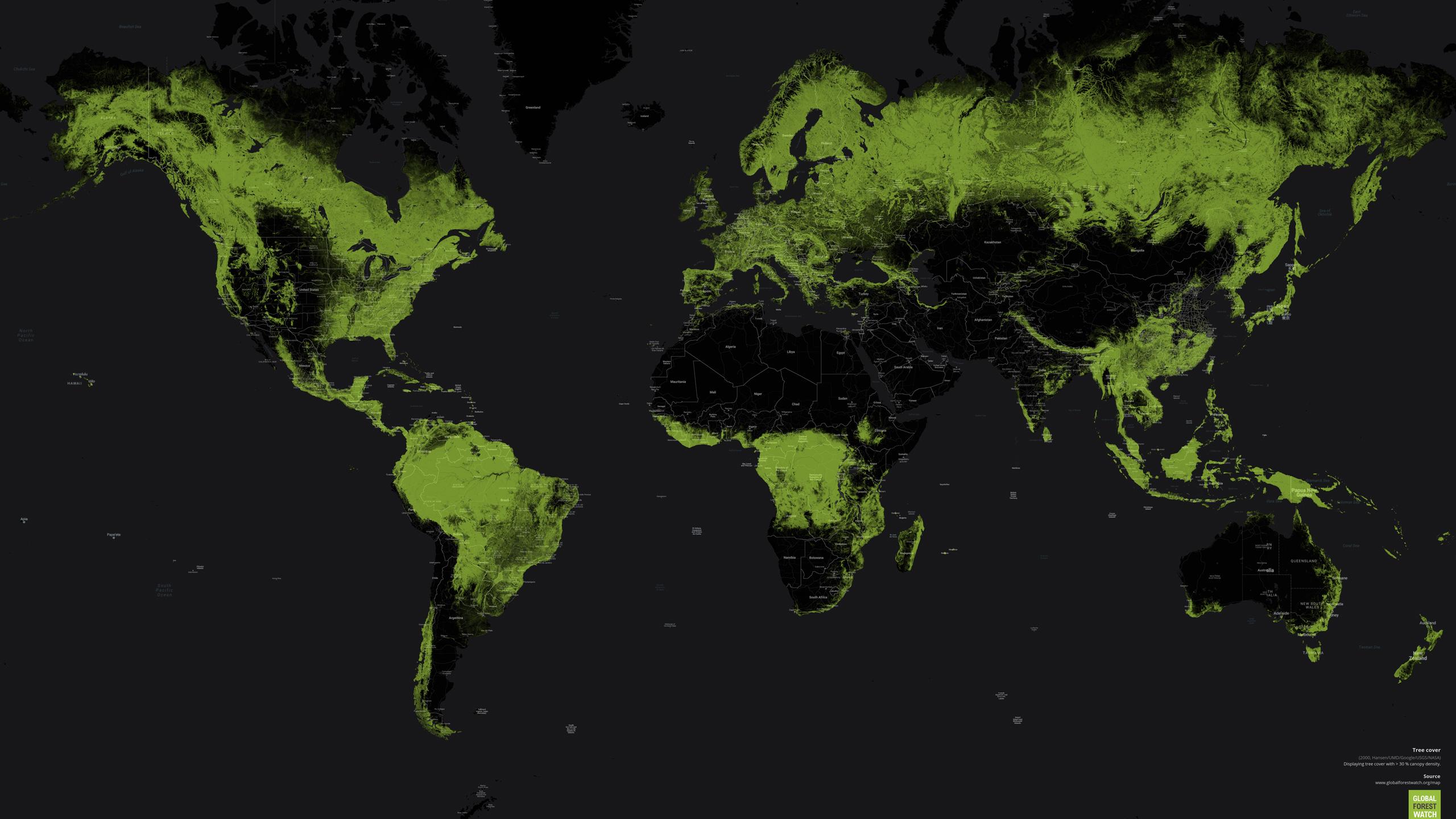 Påvirkning på verdens skoger